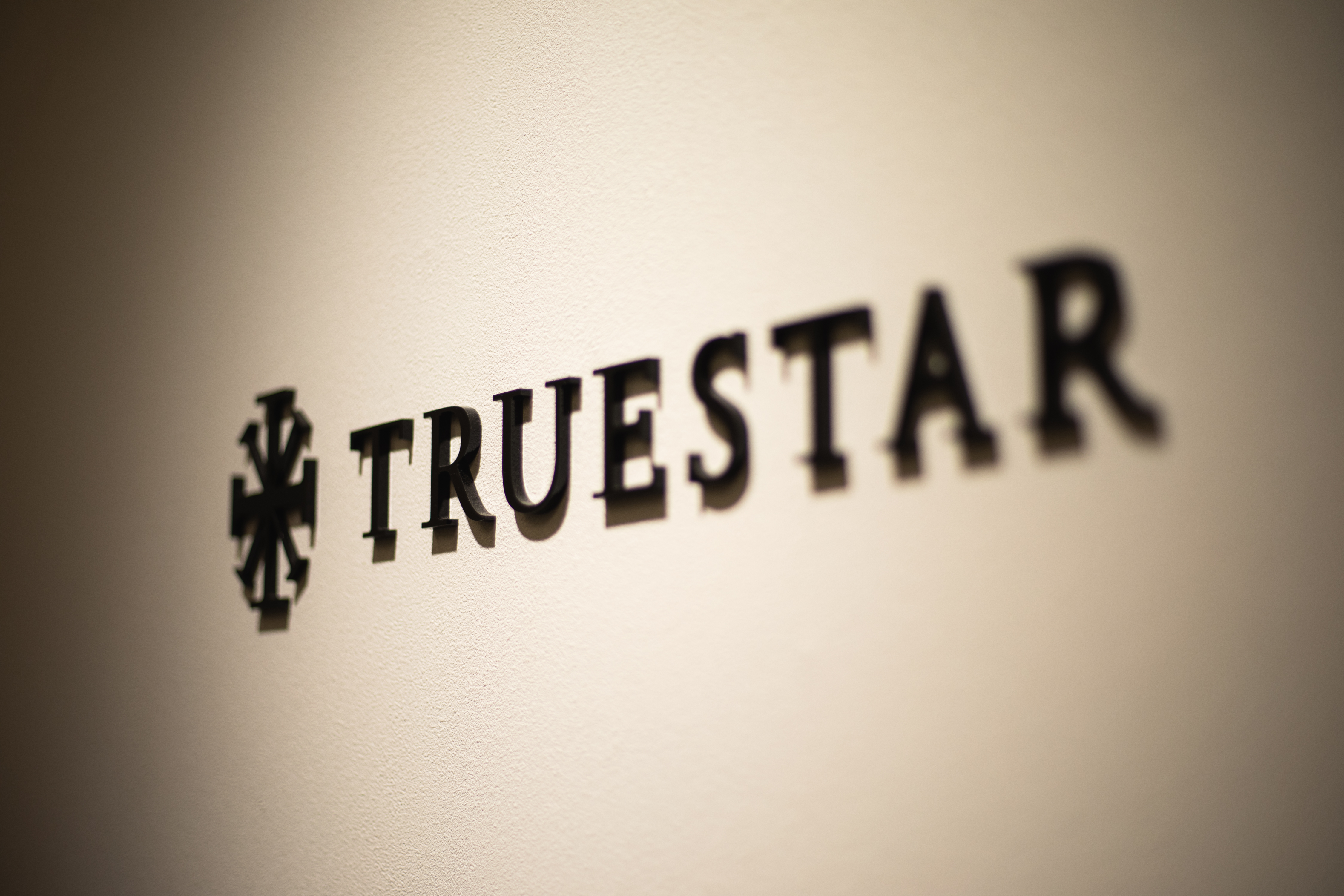 Truestar Consulting Group 株式会社