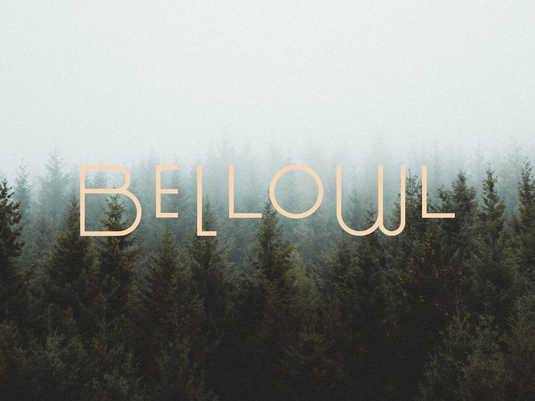 株式会社BELLOWL